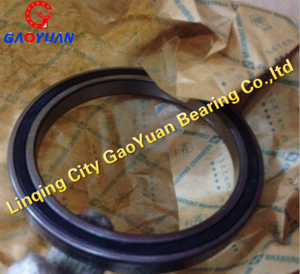 Original SKF/NTN/NSK/Timken/Koyo Packing Bearing (SL185005)