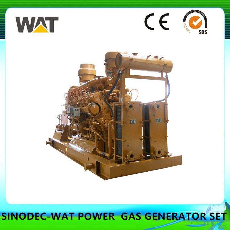 50-60Hz 300kw Biogas Generator Set From China Manufacturer