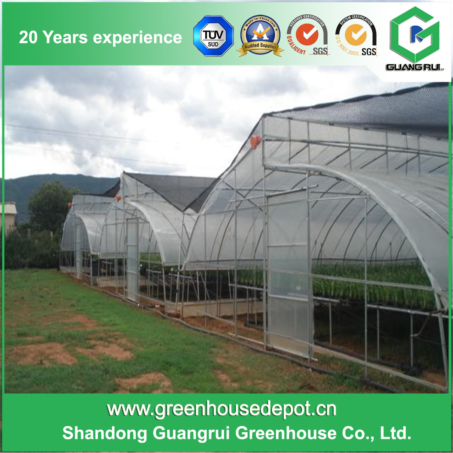 Agriculture Multi Span Film Greenhouse for Plants