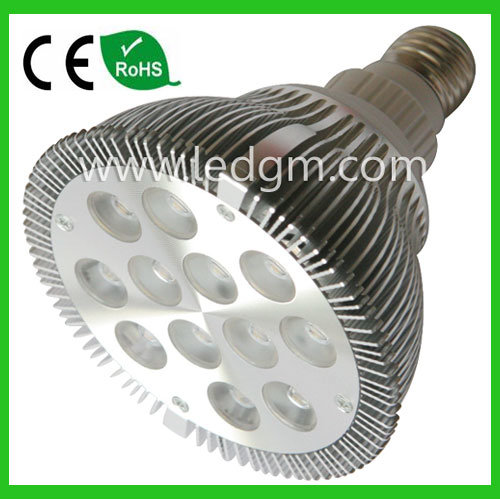 24W High Power LED PAR38 Bulbs