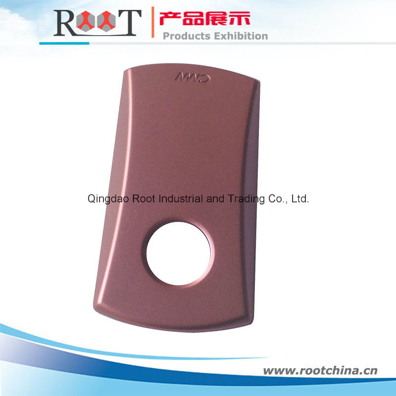 Plastic Injection Molding Parts with Spray Painting