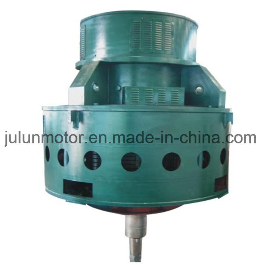 Tl Series Vertical High-Voltage Synchronous Motor