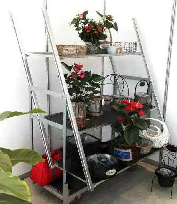 Multi Layers Flower Trolley/Cart
