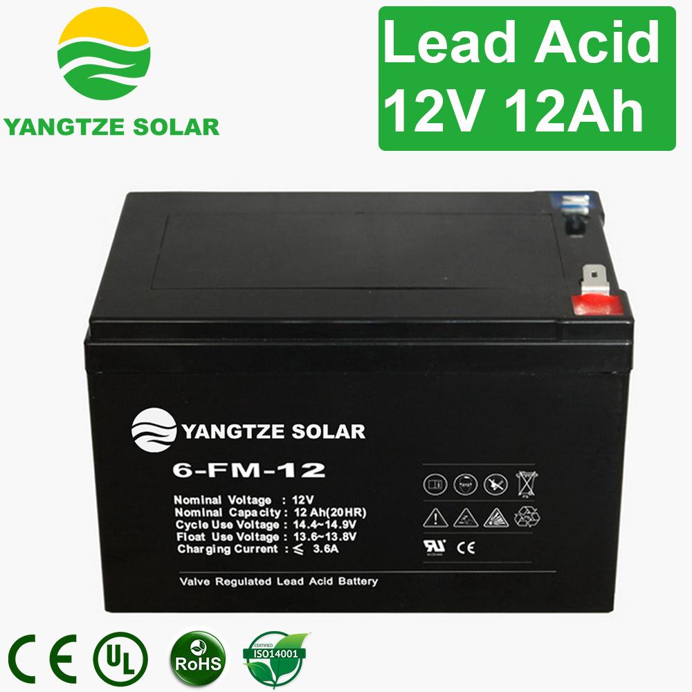 Lead Acid VRLA 12ah 12 Volt Battery