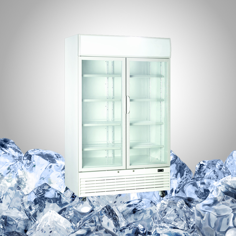 Double Door Freezer for Ice Cream