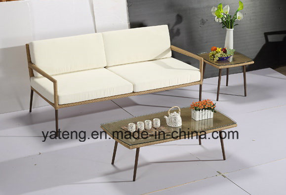 2017new Design Outdoor Furniture Patio & Hotel Using Garden Sofa Set