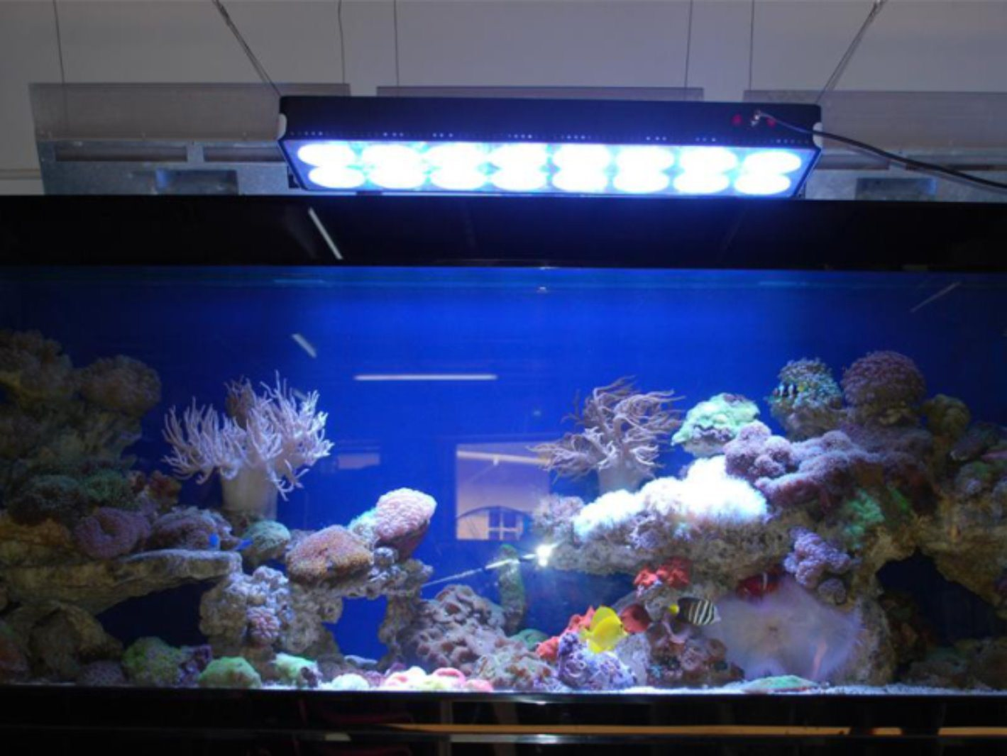 Ce RoHS FCC LED Aquarium Light with Patented Design