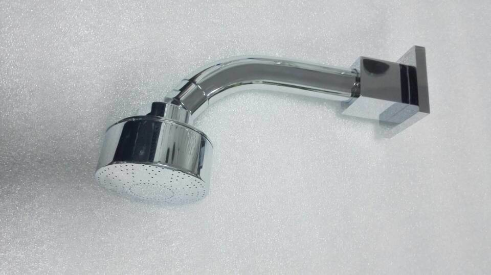 High Quality Brass Bathroom Brass Shower Head (PT103)