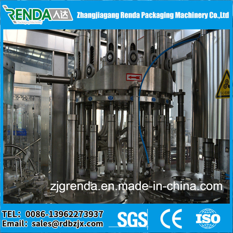 Pet Bottle Fruit Juice Packing Machine/Production Line