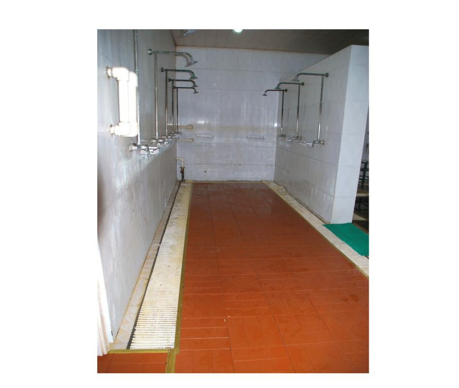 ABS Plastic Anti-Skid Floor for Swimming Pool