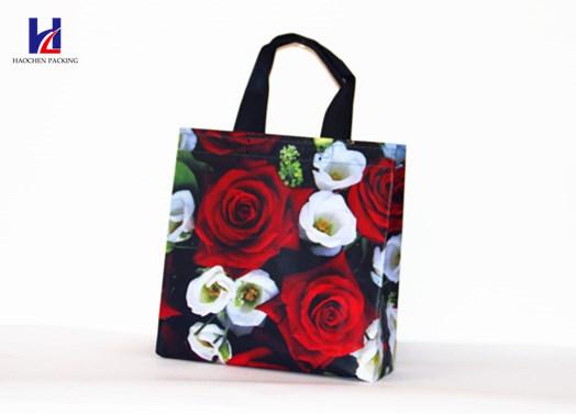 Custom Printing Non-Woven Shopping Bags