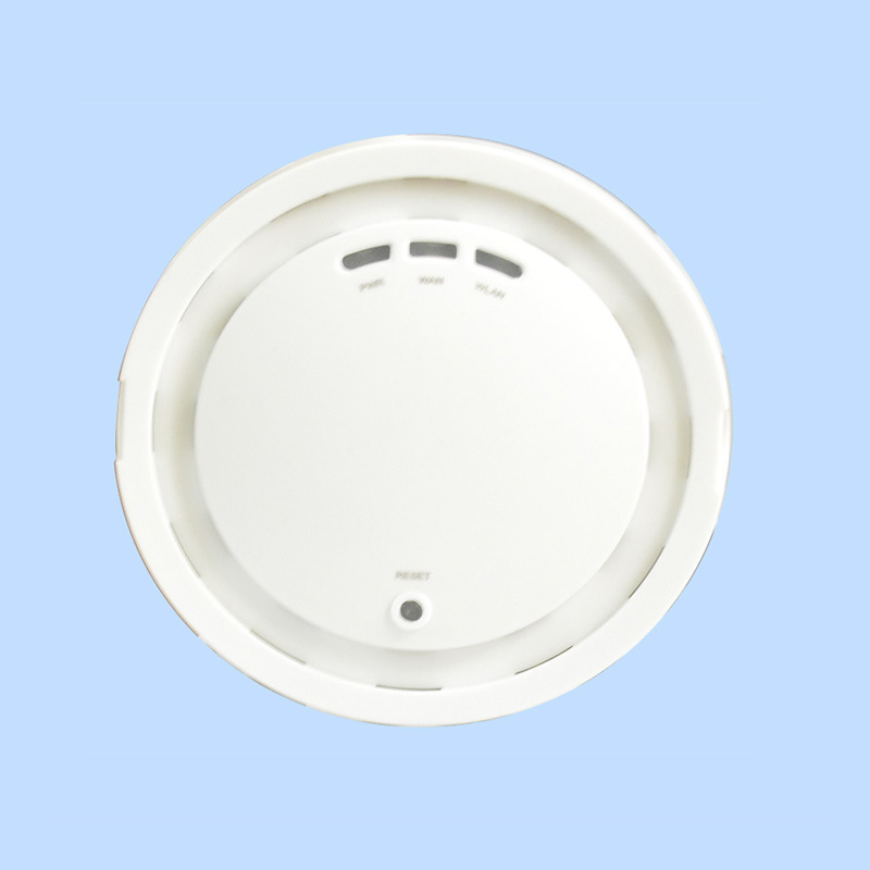 11AC 5GHz Dual-Band Ceiling Wireless Access Point (TS402F)