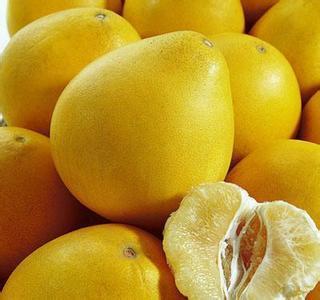 Top Sale Grapefruit Extract Naringin Extract 98%