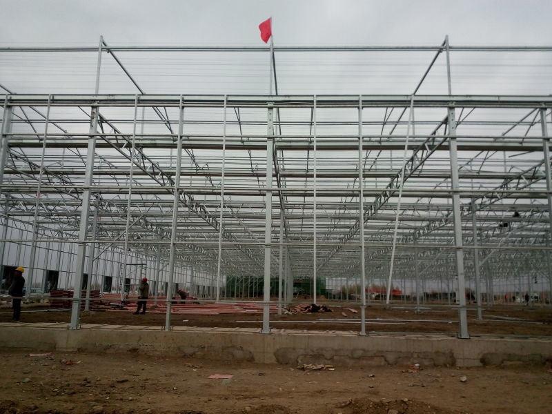 Venlo Multi-Span PC Board Agricultural Greenhouse
