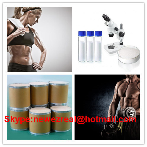 Pharmaceutical Intermediates for Muscle Building CAS: 315-37-7 Testosterone Enanthate