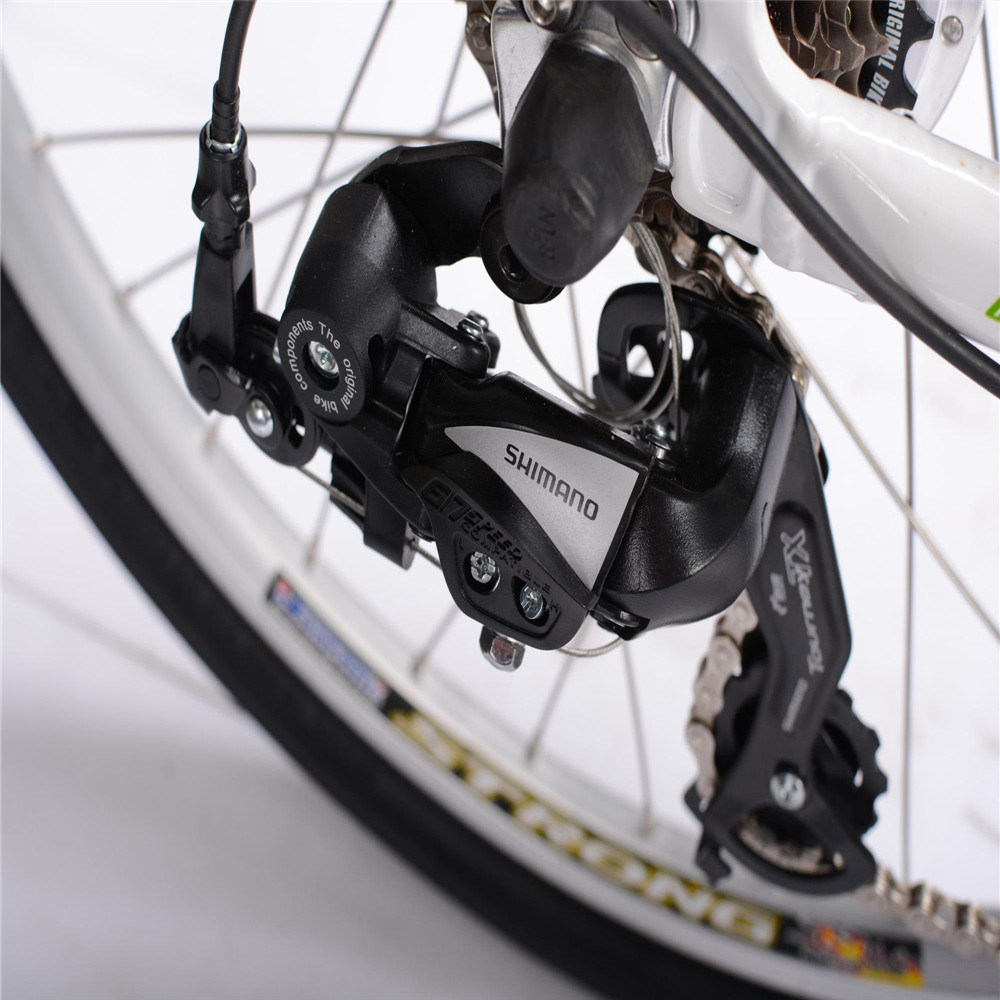 Alloy Suspension City E Bike for Woman (RSEB-303)