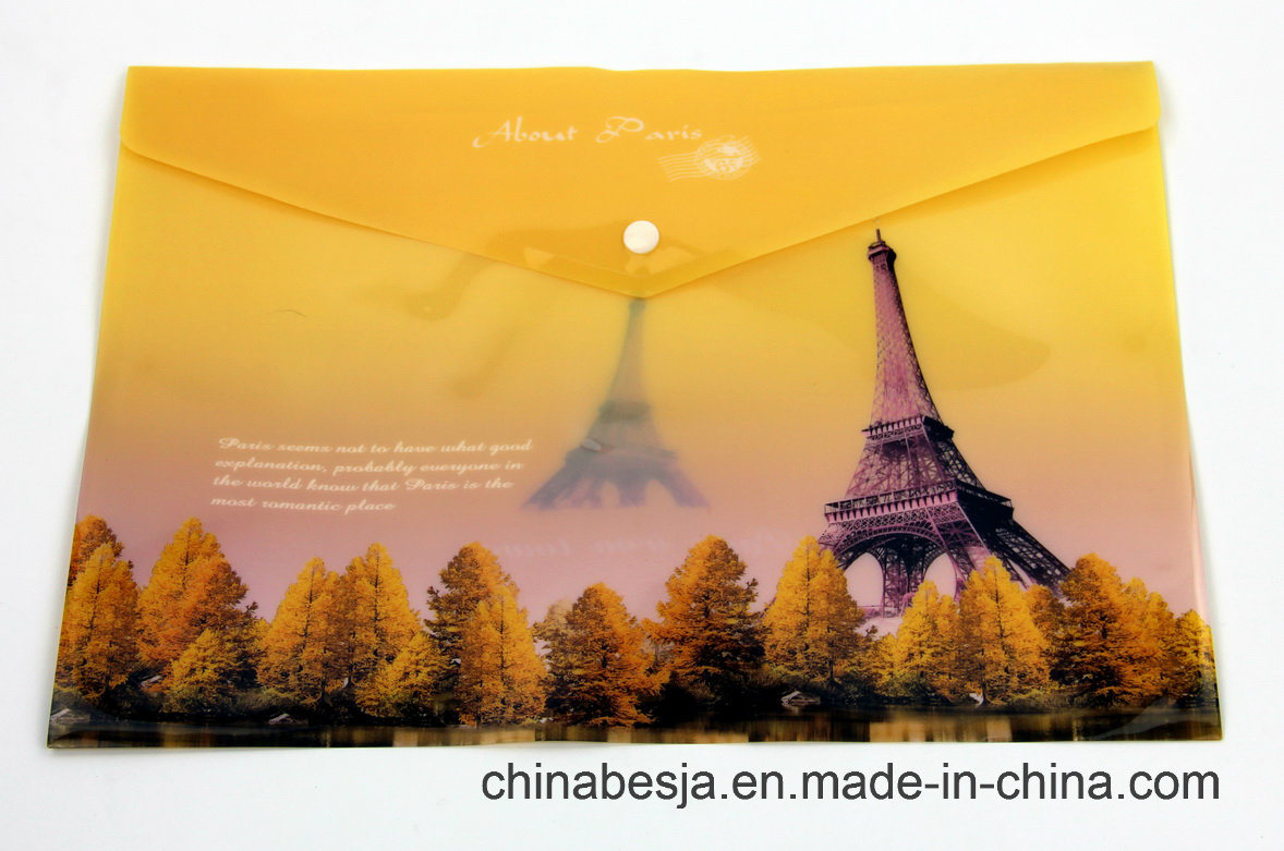 Bj-1043 Offset Print File Bag, China File Bag, China File Folder, China Documents File, Expanding File