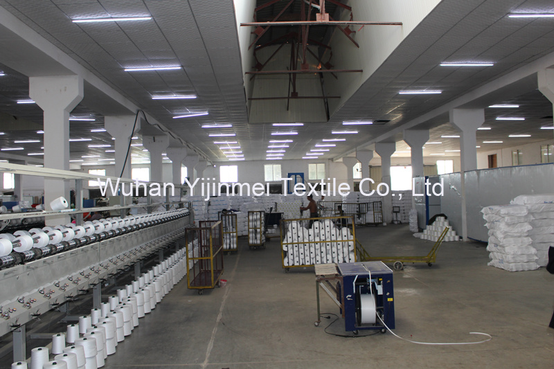 Raw Pattern 20s 20/1 20/2 20/3 Spun Polyester Sewing Thread