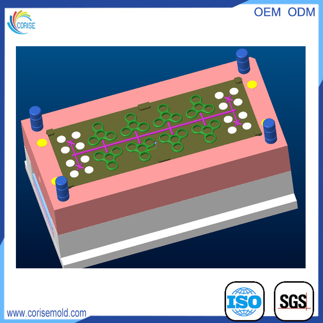Customized Structural Design Mold Design Plastic Injection Mould