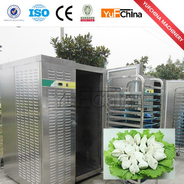 2017 Hot Sale Commercial Instant Freezer