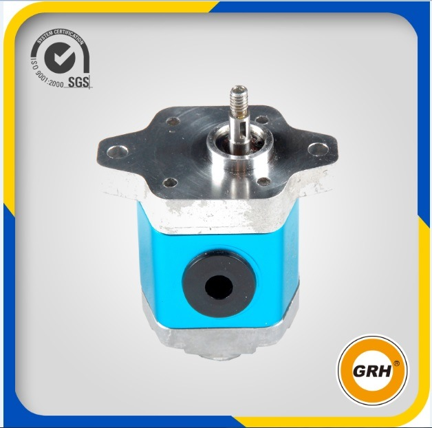 Right Rotation Small Hydraulic Gear Pump for Power Pack
