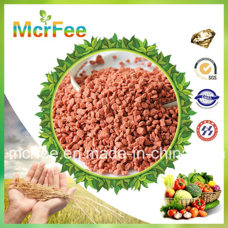 Water Soluble Fertilizer NPK 15-15-23+4 MGO