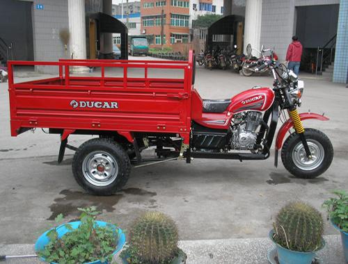 Made in China Hot New Three Wheel Cargo Motorcycle