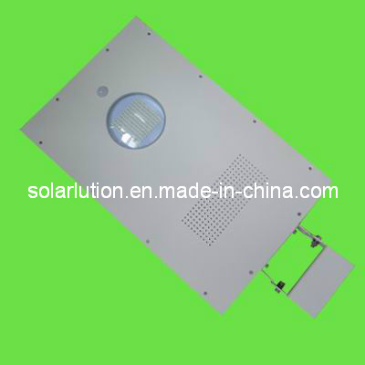 15W All in One Solar Garden/ Solar LED Garden/Solar Street Light (SLLN-215)