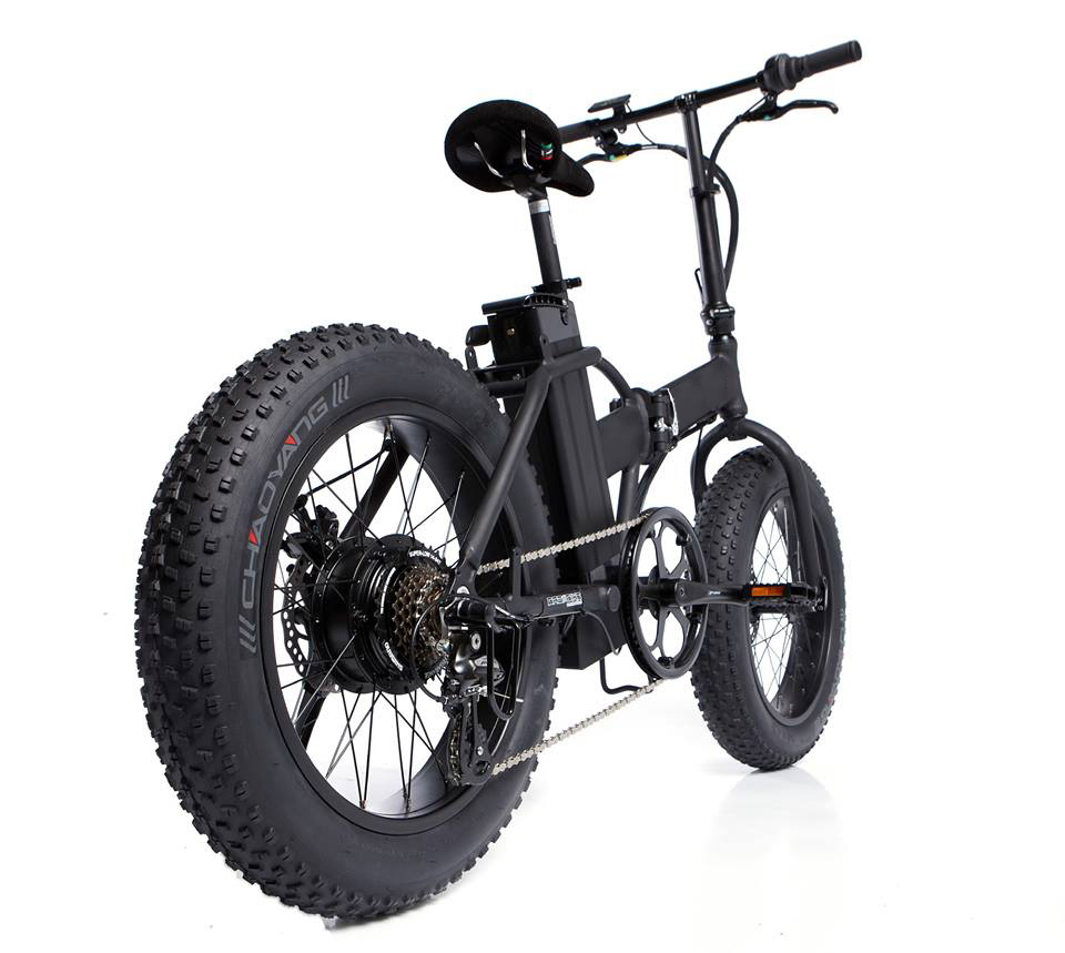 20 Inch Folding Electric Bicycle with Fat Tire Kenda