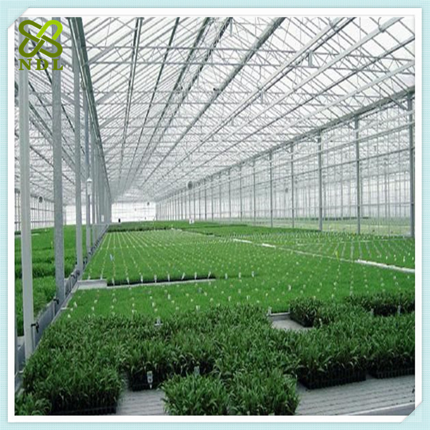 Electricity Commercial Multi Span Climate Control Green House