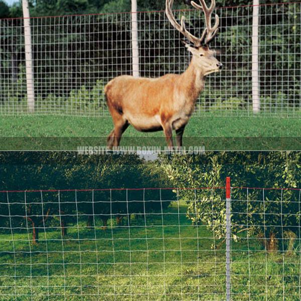 Deer & Wildlife Fence