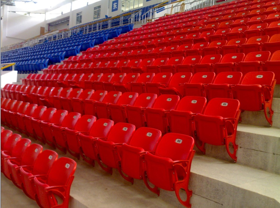 Basketball Stadium Seats Related Keywords