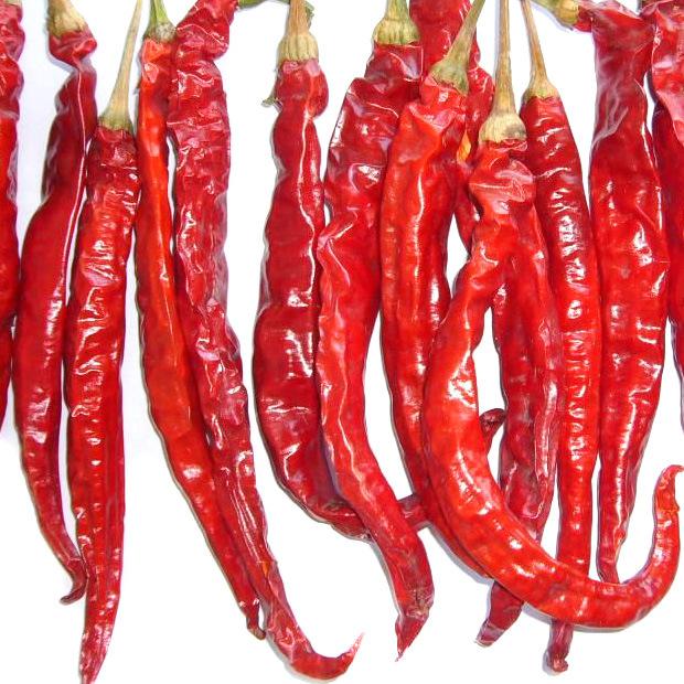 Export New Crop Vegetable A Grade Hot Chilli