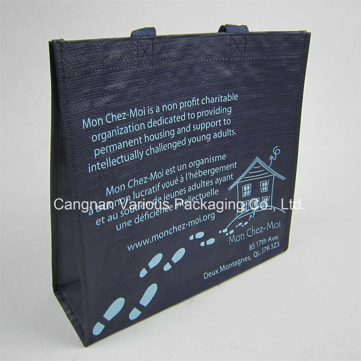 PP Woven Bag, PP Woven Carrier Bag (BG1071)