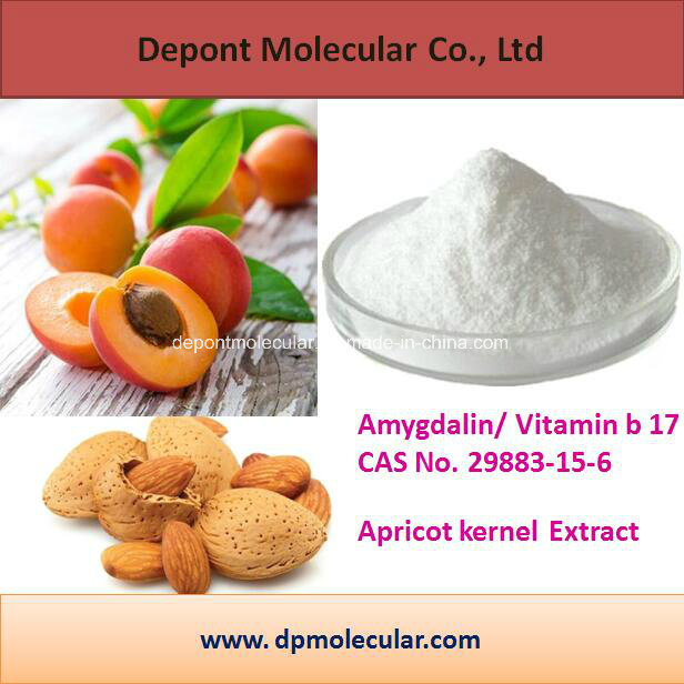 Hot Sells Product Amygdalin, Vitamin B 17, Apricot Kernel Extract, Cancer  Treatment