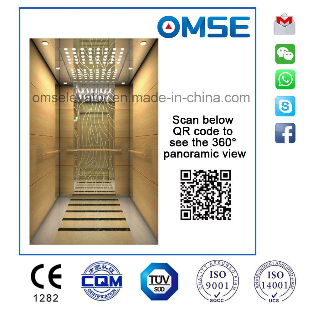 Ce Approved Mrl Passenger Elevator with Germany Technology