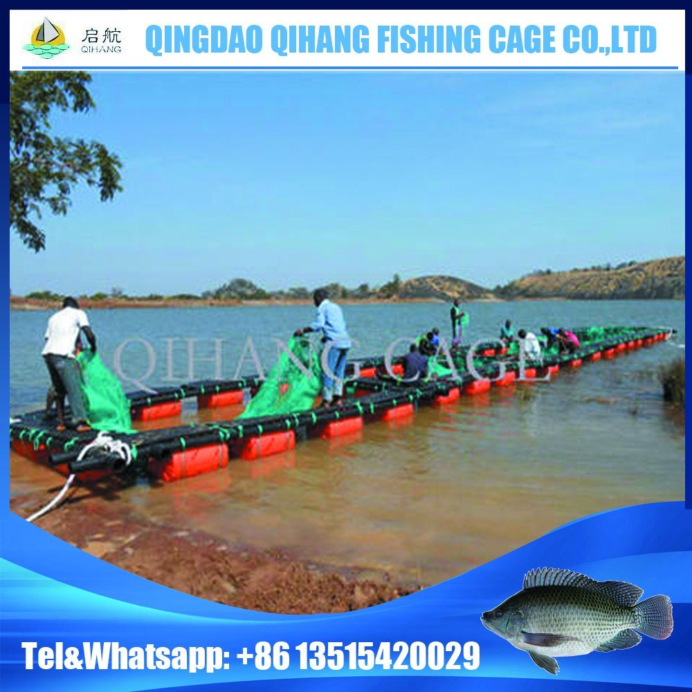 HDPE Floating Farming Fish Fingerling Net Cage