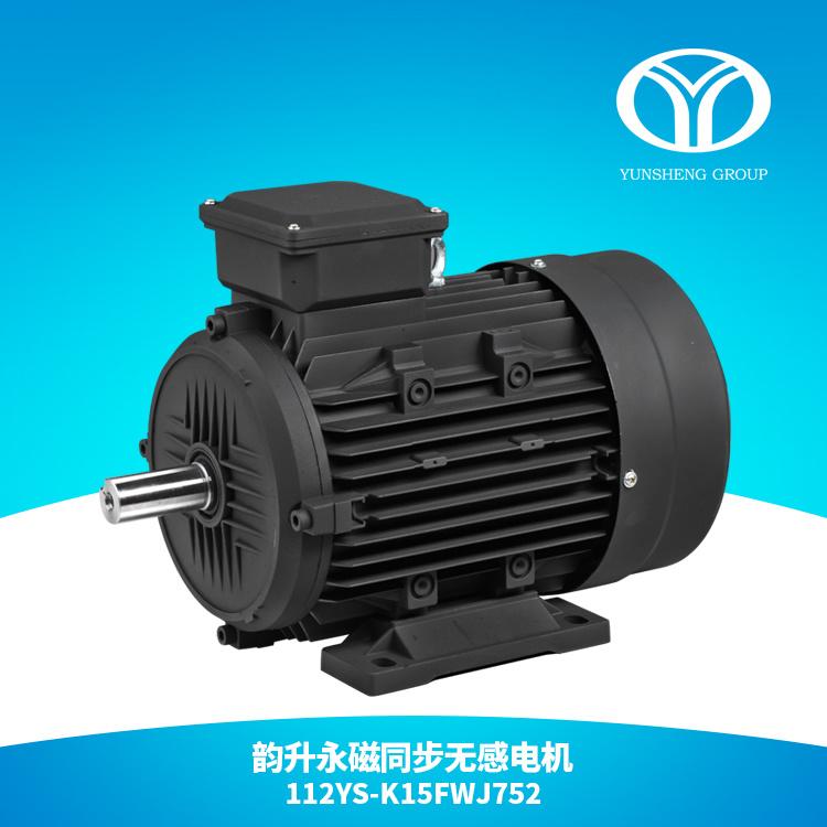 AC Permanent Magnet Synchronous Motor 5.5kw 3000rpm
