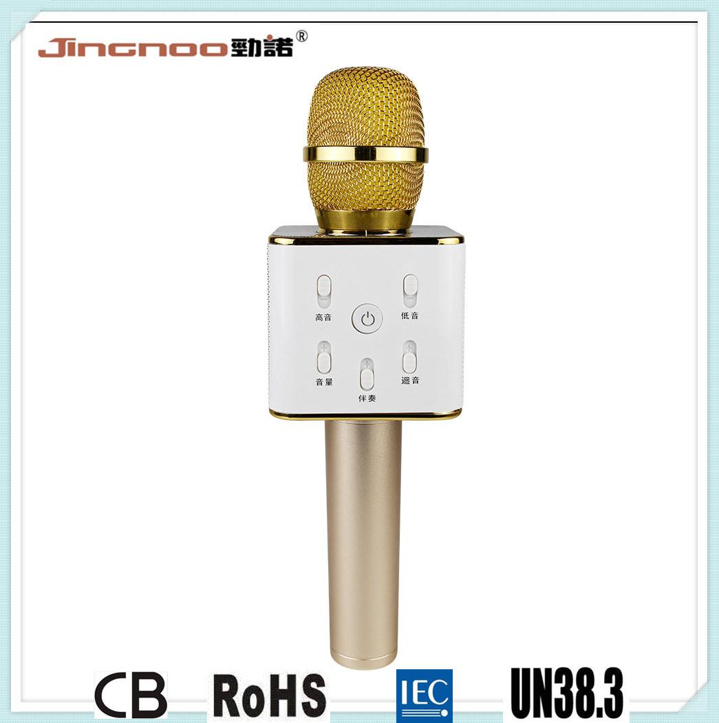 Portable Bluetooth Speaker Wireless Microphone