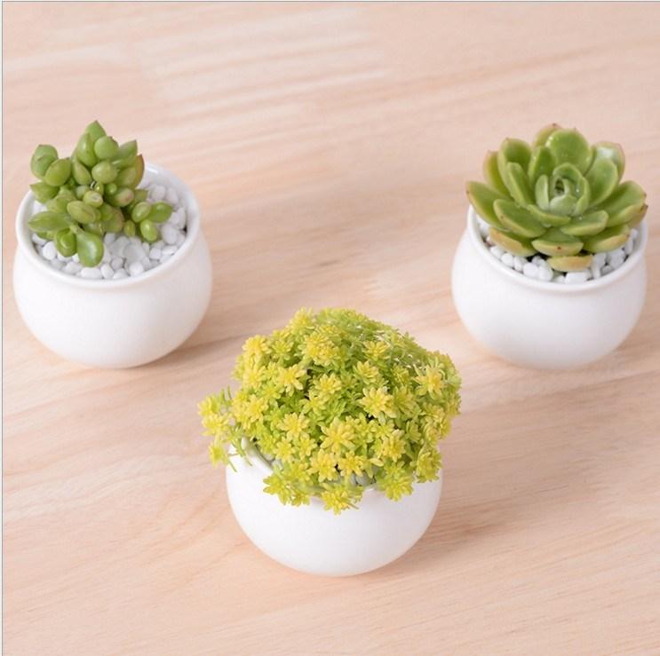 Creative Desktop Decoration Mini White Round Ceramic Flower Pot