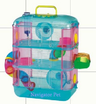 animaux hamsters lapins hamster reste maison sujet