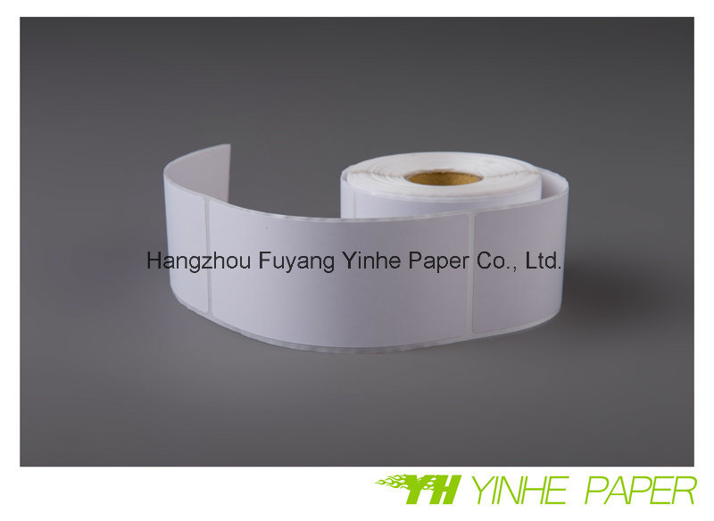 Cast Coated Self Adhesive Paper