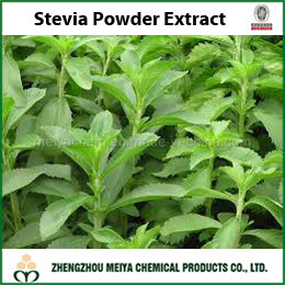 Best Quality Stevia Powder Extract with Stevioside and Glucoside as Sweetner Food Additive
