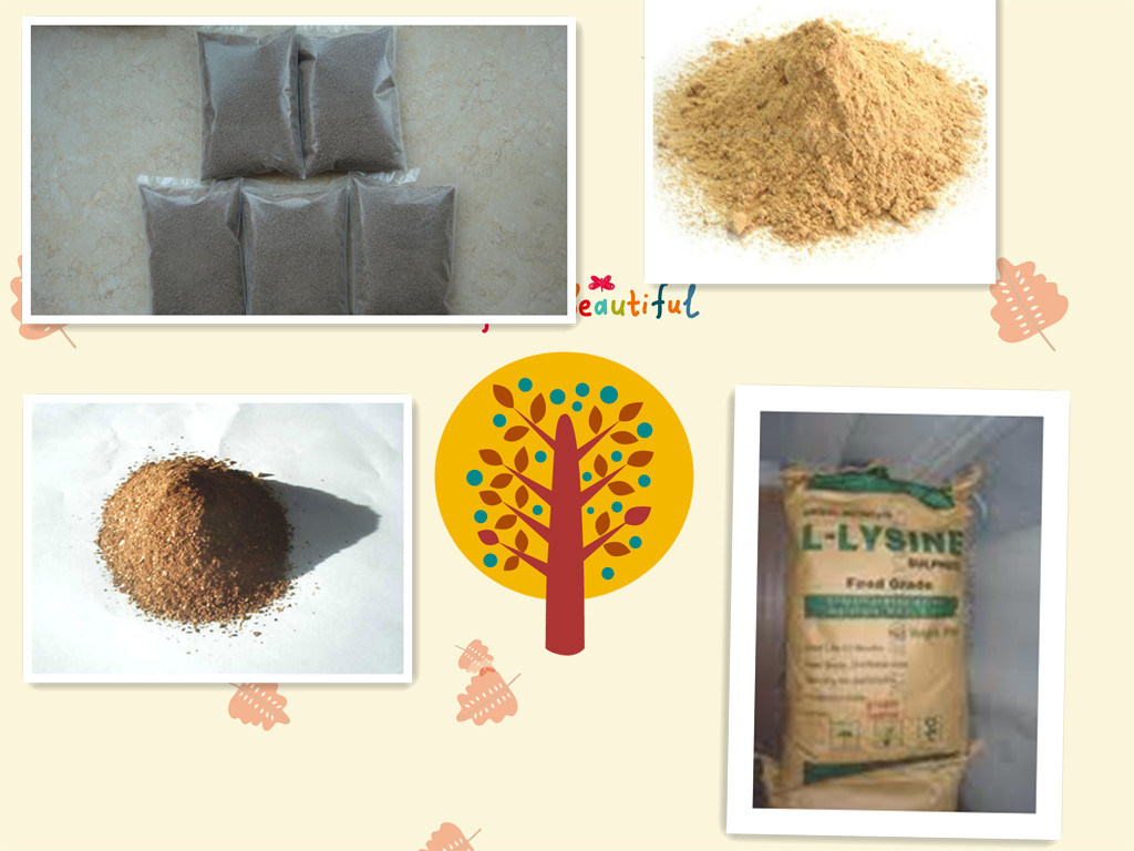Choline Chloride 50%60%70% for Chicken Feed