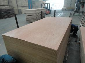 Good Quality Plb Veneer with Good Price