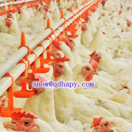 Customized Environment Controller Temptron 616 for Livestock