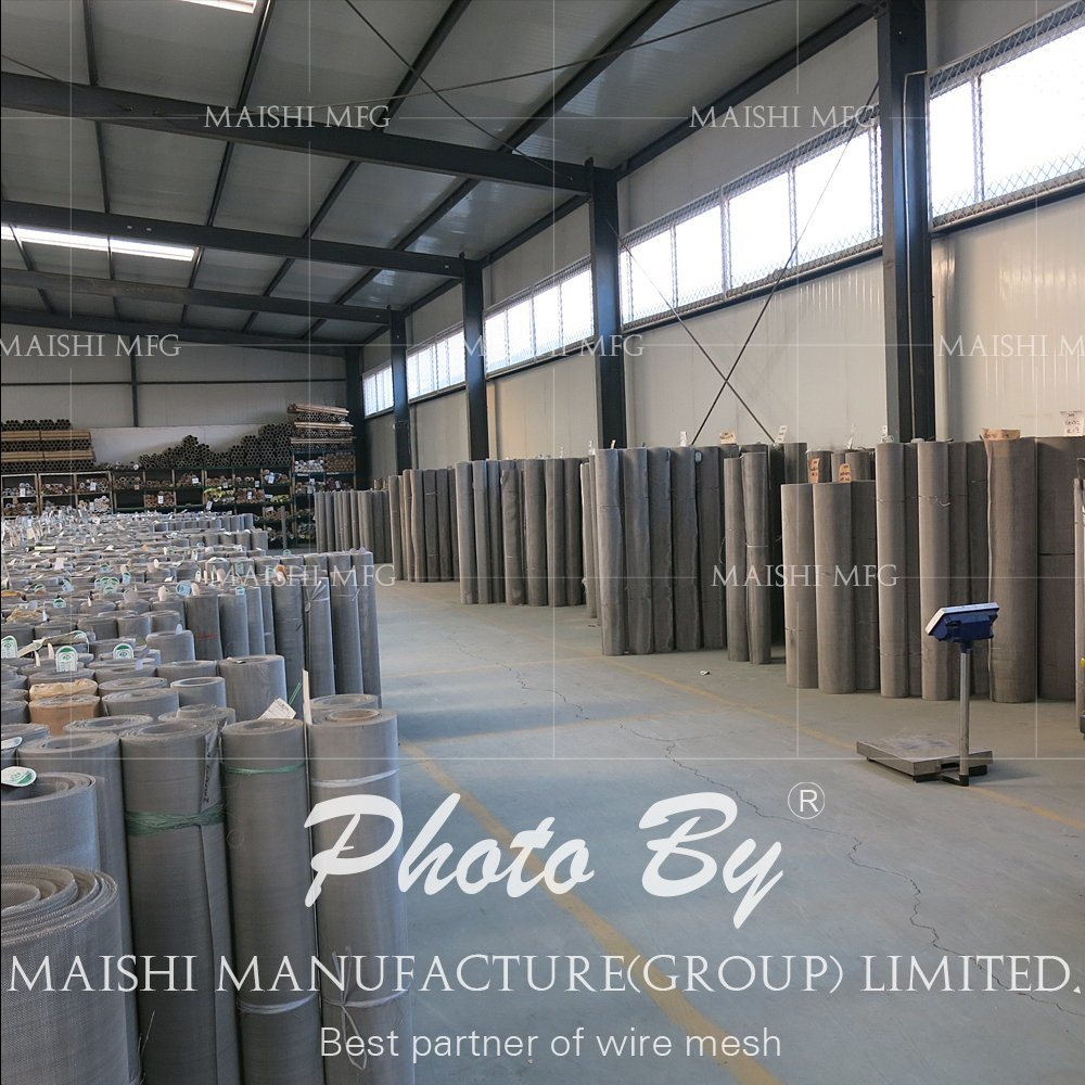 Stainless Steel Wire Mesh Screen Discs/Wire Cloth/Wire Mesh