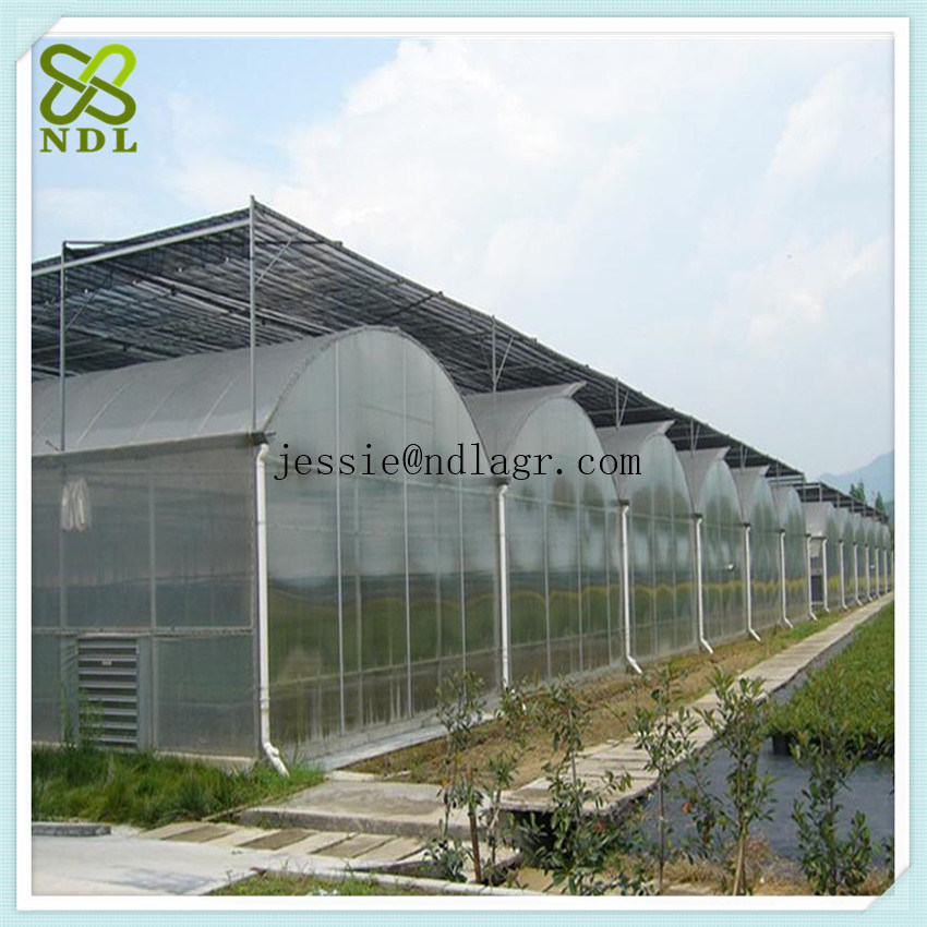 Hydroponic Systems Film Cover Green House