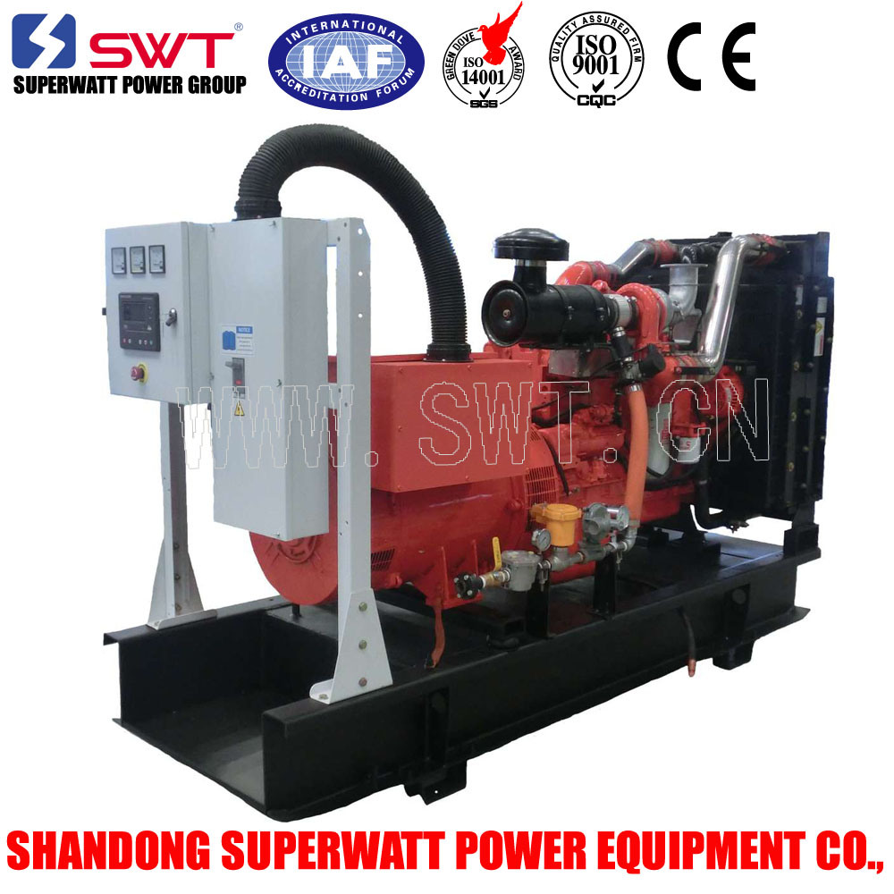 Cummins Engine Electric Generator with Natural Gas LPG CNG