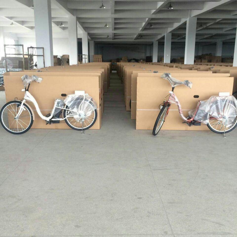Hot Selling 24V 250W Electric Bicycle/Bike